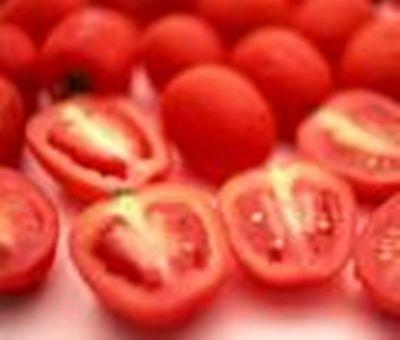 Tomato Extract Powder