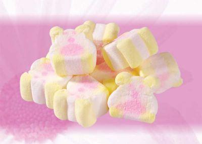 ZS03 Cute Bear Marshmallow Candy 1kg
