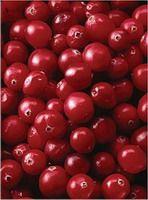 Cranberry PE